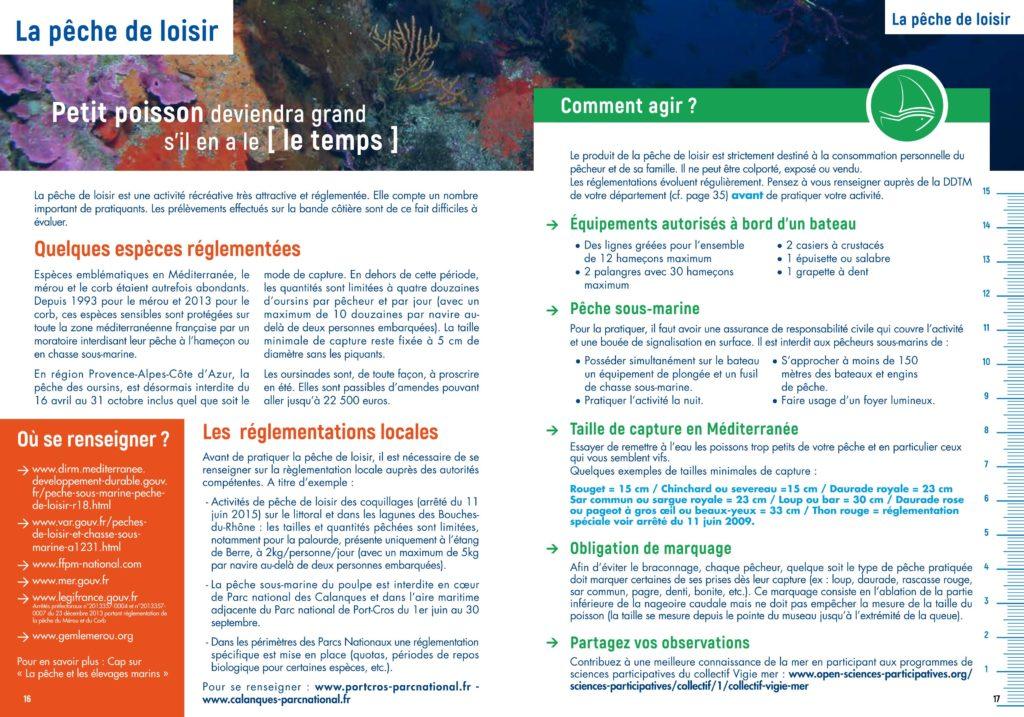 La pêche de loisir - espèces réglementées et réglementations locales en Région Sud