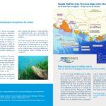 La gestion et la protection du littoral en Région Sud